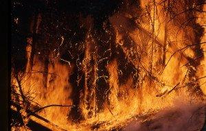wildfire-1138193_960_720